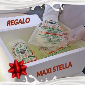 maxi stella gift